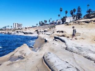 The cliffs in La Jolla